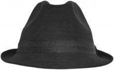 Шляпа (Трилби) Шл4 ЧN цвет: чёрный фото
